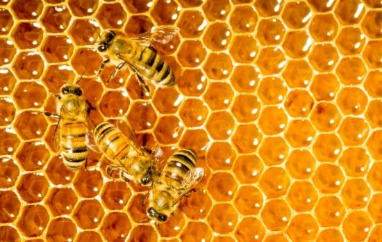 9 Surprising Benefits Of Honey