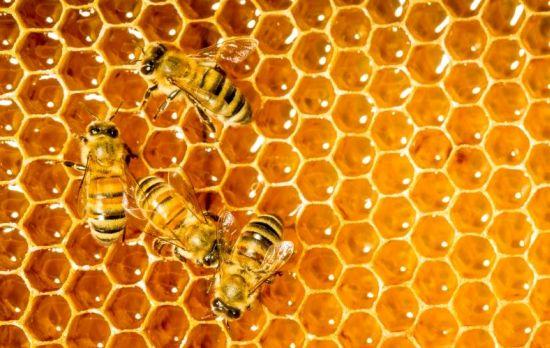 9 Surprising Benefits Of Honey